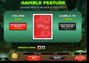 Gamble bonus feature in online pokies games